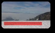 Vign_m-le_et_pollution_10_02_2012_023